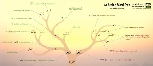 An Arabic Word Tree by Nigel of Arabia