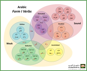 Arabic Form 1 Verbs Venn Diagram by Nigel of Arabia